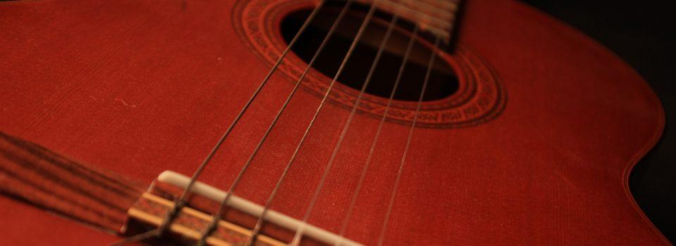 gitaarschool laren
